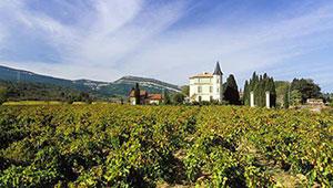 vins rouges Languedoc