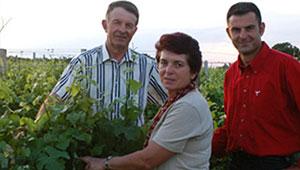 vente vins biologiques