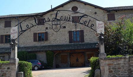 Domaine Louis Tête