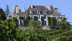 vente vin Bordeaux